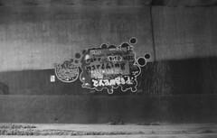 Street belletristics (m_travels) Tags: graffiti tagging mural art writing urban city filmisnotdead 35mmfilm analogue blackandwhite filmphotography selfdeveloped analog argentique d76 chemicals homeprocessing developing kodaktrix400 wall street sf sanfrancisco poetry