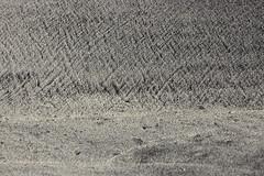 161025-1319-Sand (Sterne Slaven) Tags: massachusetts plymouth marblehead capecod marthasvineyard edgartown oakbluffs vineyardhaven salem lynn turkeyvulture seawall tide waves seaweed historic october sailboats lighthouse hightide lowtide wildturkeys offseason canoe sunset fisherman seagulls gulls nakedwoman lensbaby katamabeach lucyvincentbeach gayhead chappaquiddick lagoon bramble whalingchurch seacreature cemetery plimothplantation roosters spiderwebs oldburialhill pilgrims clamdiggers sanddunes barnstable taunton sexynude sunhalo fullmoon sterneslaven water fountain 1600s wampanoag mayflower pelt harbor chathamma seals ocean atlanticocean coastal newengland actors