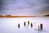 Golden Light & Stillness (davidyuweb) Tags: morning light colors sunrise golden pier san francisco long exposure hard 9 stop filter edge nd 17 stillness hoya