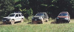 freelander_three2