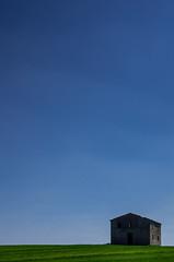 PEK58770 (Marco Sal) Tags: old light italy plants house plant tree verde landscape casa italia minimal val tuscany di toscana albero prato luce paesaggio casolare chiana minimalista valdichiana frattasantacaterinaleopoldinaverde