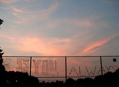 M ss You Always (Georgie_grrl) Tags: sky toronto ontario art love clouds fence random dusk smiles happiness positive lovely lovenote trinitybellwoodspark itsthelittlethings mydarkpinkside samsungd760 new365project mssyoualways thealwayscamelater andtheiwentmissingalittlewhileago