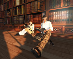 Library (0airin0) Tags: sl secondlife edelweiss