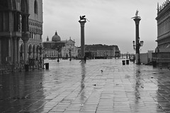 Rainy Piazza San Marco, early morning (David McSpadden) Tags: venice italy rain day basilica earlymorning piazza sanmarco veneto wingedlion sttheodore twocolumns rainrefletion