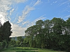 Almost A Constable? (Deepgreen2009) Tags: trees sky clouds rural garden painting landscape style cirrus johnconstable