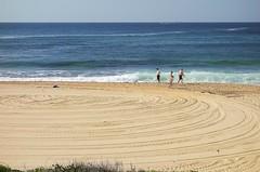 Beach Series (Julie Byrnes) Tags: beach australia series copa beachproject juliebyrnes