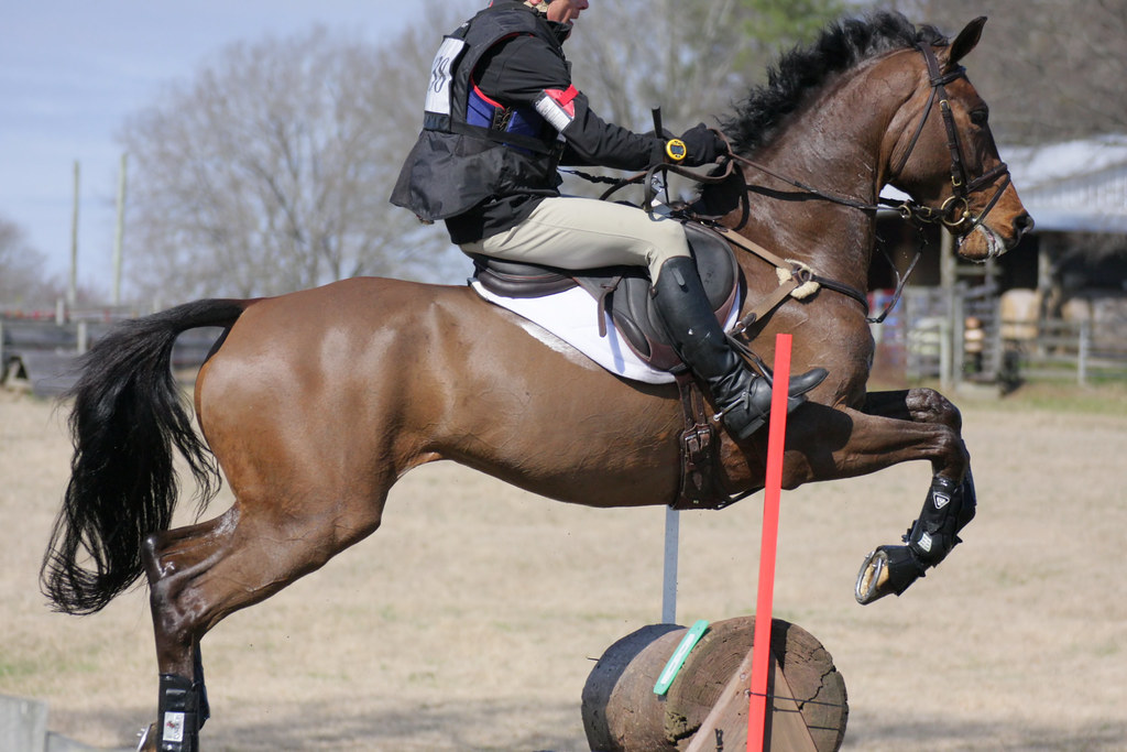 Pine Top Farm Winter Horse Trials