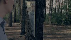 (z-x) Tags: music man tree water woods koacze