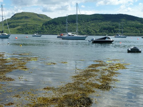 Craignish 17 june 2013