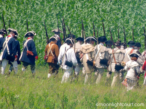 Battle of Monmouth, 2013