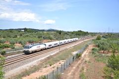 035 (Christian Fincato) Tags: barcelona tren mediterraneo alicante corredor renfe talgo 252 peiscola alacant benicarlo mediterrani 046