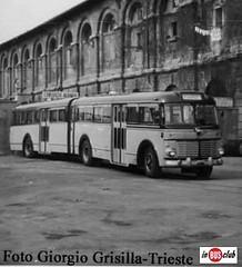 OM Super Orione Viberti TS 23779 SAP Trieste 6 1956 Foto Giorgio Grisilla Trieste met anni 60  mid 60s (inBUSclub) Tags: 6 bus classic vintage italian 60s foto super pullman