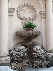 San Pantaleo 3 (Piazza di) - Palazzo Russo - Ninfeo 05 (Fontaines de Rome) Tags: 3 rome roma fountain san brunnen fuente font piazza fountains palazzo fontana fontaine rom fuentes bron russo fontane fontaines ninfeo pantaleo piazzadisanpantaleo fontanadelninfeo piazzadisanpantaleo3 palazzorusso