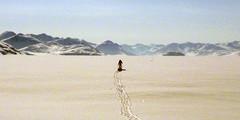 NP2P-245 (icetrekker) Tags: expedition arctic northpole ellesmereisland icetrek ericphilips wardhuntisland poletopolerun northpoletocanada