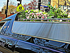 The Last Bouquet (Renee Rendler-Kaplan) Tags: flowers signs rooftop floral last corner canon reflections dead death silent gbrearview blossoms over may busstop funeral final signage finished parked blooms done hdr hearse gapersblock wbez skokie 2014 fini atrest chicagoist laststop thankslisa peoplecrossing skokieillinois reneerendlerkaplan canonpowershotsx40hs thelastbouquet