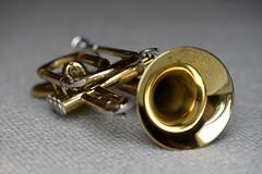 Kornett (DSC_6240a) (Brbel Nielsen) Tags: music trumpet instrument brass cornet trompet kornett