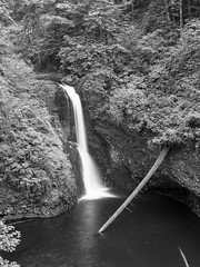 img3720-med (matthauer) Tags: 120 film oregon waterfall bronica asteria buttecreek bronicaetrsi scottsmill buttecreekfalls