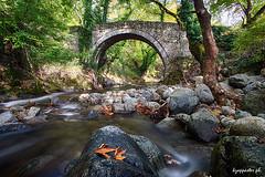 Delis (kzappaster) Tags: stonebridge sony sonya7 a7 bridge vivitar vivitar19mmf38 19mm 19mmf38 mirrorless compactsystemcamera delis xirokampos xirokambos kalambaka thessaly trikala greece stream longexposure hdr