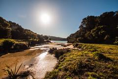 IMG_3403 (Schlueter1992) Tags: neuseeland2016urlaub abeltasmannationalpark tasman neuseeland