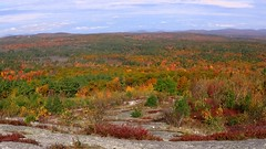 Blue Job Foliage (TimmyDennis) Tags: fall autmn new hampshire mountain mountains outdoors outdoor woods forest weather nature view vista