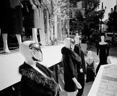 The Sound Of The Crowd. (blueP739) Tags: olympus om4 om1n olympusom om3ti om2sp om10 om1 om2n om3 olympusom1 orange plustek7200 pussy bw blackwhite tulip turkey turkishphotography mannequin street kentmere100 ilford id11 id1111 window shoppingcentre lyrics humanleague soundofthecrowd 1980s music