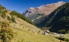 Devtya... (J&S.) Tags: italie italia valgrisenche devtya retour alpage surier nature chapelle montagne landscape