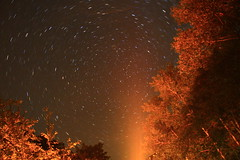 North Star (ET's Photo Home) Tags: northstar doorcounty night camping upnorth wisconsin nature trees stars eggharbor