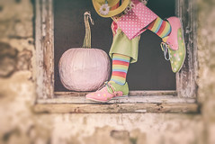 clowning around (trs125) Tags: halloween clowns clownshoes pink pumpkin window costumes flickrfriday he