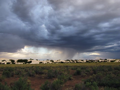 IMG_0074 (whitesands_nps) Tags: 2015 clouds nationalpark newmexico whitesandsnationalmonument publiclands states storms weather year