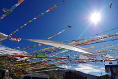 prayer flag (kangxi504) Tags: tibet china   prayerflag darchor