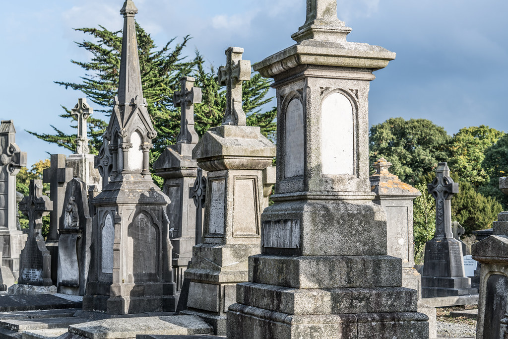 A QUICK VISIT TO GLASNEVIN CEMETERY[SONY F2.8 70-200 GM LENS]-122121