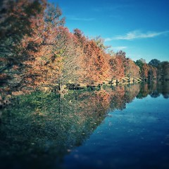 Reflection I (scottwills) Tags: uploaded:by=instagram reflection reflections trees autumn fall water lake river riverside red warm leaves scott wills scottwills