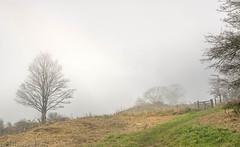 Misty Devils Dyke   5 (Dennis in Shoreham-by-Sea ( LRPS )) Tags: otherkeywords autumn mist devilsdyke