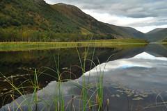 Loch na Leitreach (hr43) Tags: fallsofglomach sallachy loch long dornie wester ross highland scotland