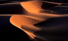 Lut Desert Sunrise - Iran (André Schönherr) Tags: 40d visionhunter desert wüste loot sand dunes düne dry hot salt sunrise sonnenaufgang kavir lut sands
