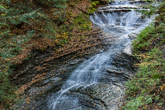 Bridal Falls (markmapaphotography) Tags: waterfall fall water leaves color park