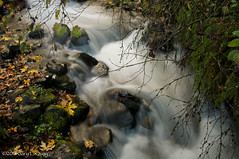 Wahkeena Falls, October 2016 (Gary L. Quay) Tags: wahkeena falls water waterfall oregon columbia gorge gary quay foolscape imagery