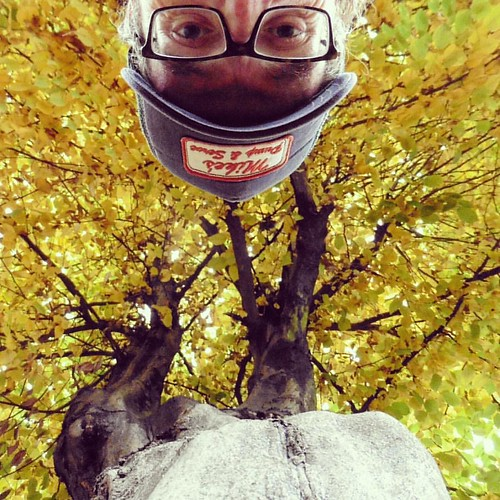 Self-portrait with autumn tree #akuku #peekaboo #selfie #autoportret #selfportrait #autumn