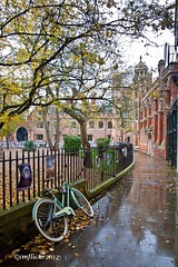 St John's College Cambridge (smflickr2012) Tags: autumn cambrige stjohnscollege bicycle green rain wet tree canon 500d