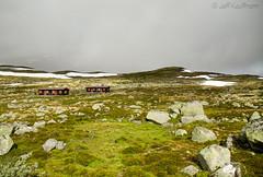 Hardangervidda (kauffmann.jeff) Tags: paysage landscape specland