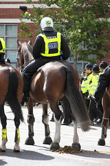 Mounted Police (Ian Press Photography) Tags: ipswich town football club portman road suffolk norwiich city fc 999 police emergency service services match old farm derby championship norfolk horse horses mounted london colp