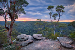 Beauty Close To Home || MARTIN'S LOOKOUT || SPRINGWOOD (rhyspope) Tags: australia aussie nsw new south wales canon 5d mkii springwood martins lookout sunrise sunset rhys pope rhyspope nature blue mountains view vista sky clouds weather tree colour