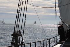 Port (Jensje) Tags: netherlands klipperrace 2016 clipper race sailing ijsselmeer wind white light segeln