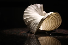 IMG_0521 (peterdbarnes) Tags: folded folding giấy kertas könyv origami papel paper papier papir papper pendant pleat бумага נייר مقاله ورقة काग़