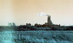 Keep on Burning (4) (Mrs.Black&White) Tags: praktica ltl3 carlzeiss jena 50mmf28 lomography lomochrometurquoise handprocessed tetenal c41process dunbar eastlothian scotland