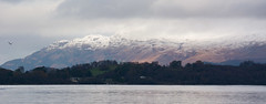 Loch Lomond #2 (Claire Stones) Tags: water lochlomond november nikond7100 scotland nikon7100 westcoast snow