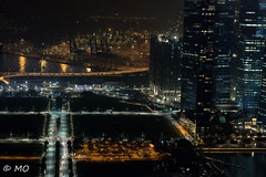 Goodnight Singapore (mathieuo1) Tags: singapore skypark night cityscape mbs marinabaysands town asia flows nightscape perspective nikon d5 dlsr mathieuo travel explore share panorama