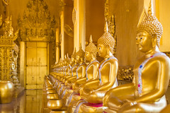 A row of golden buddha statue. (Look Aod27) Tags: architecture art asia asian attraction bangkok buddha buddhism buddhist culture face faith gold golden landmark meditation old oriental perspective religion religious row sculpture sitting spiritual statue symbol temple thai thailand tourism traditional tranquil travel wat worship yellow