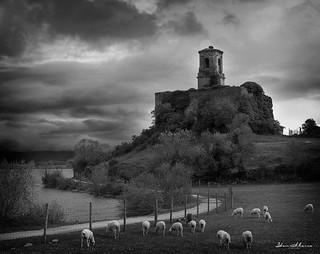 Azua ovejas e iglesia BW.- Nº44