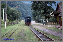 Ukraine 93_131aa (r_walther) Tags: schmalspur doppeltraktion theresiental tu4 waldbahn zakarpattia ukraine ukr